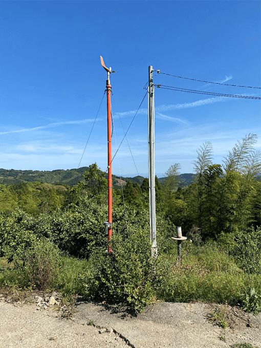 熊本で金峰みかんを育てる伊藤ミカン園の赤い柱